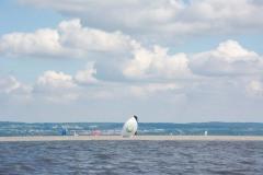 Pannonia-Sailing-Week-2021_BB-64